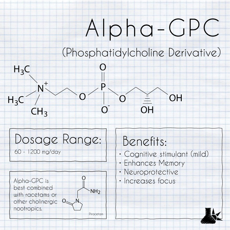 alpha-gpc nootropic cover infographic