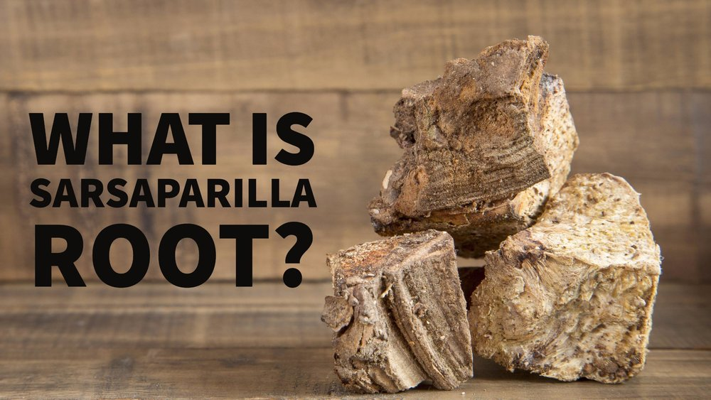 what is sarsaparilla root