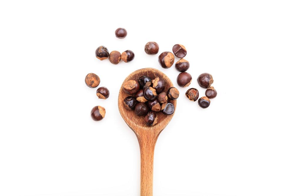 guarana seeds on a spoon