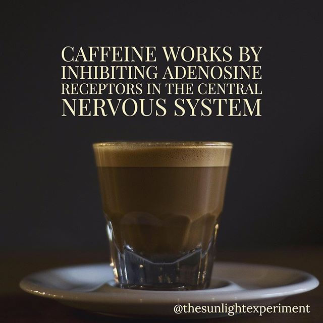 #Caffeine is the magical substance in #coffee that makes us feel awake. What's really going on is the caffeine is stopping adenosine from slowing our neurons down and causing us to feel slow and tired mentally.