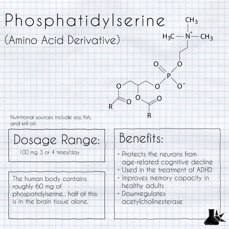 phosphatidylserine nootropic overview
