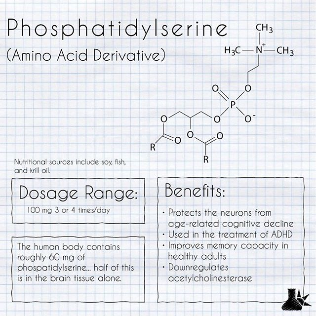 Phosphatidylserine is a naturally occurring compound produced throughout the body, but has a particular preference for the brain (more than 50%). Although we produce this compound naturally, supplemental use has marked protective effects against age-related cognitive decline, and can improve the working memory of healthy individuals. #alzheimers #cognitive #phosphatidylserine #nootropic