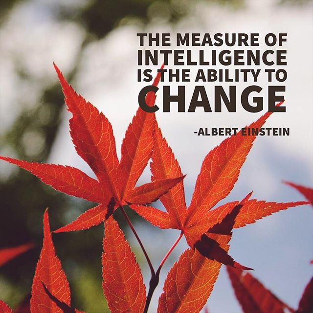 The ability to change is arguably the best attribute of intelligent people. Change causes your mind to shift and identify new patterns and opportunities. With intelligence this comes more easily. #nootropics