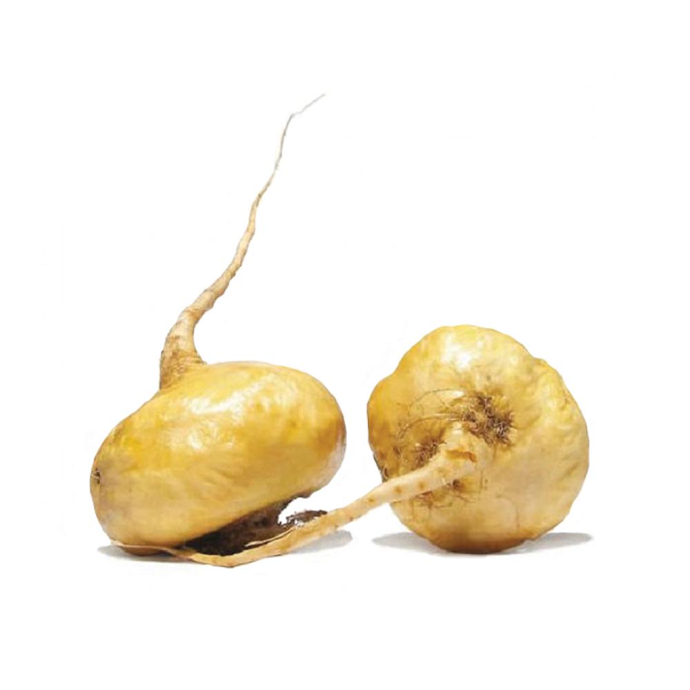 maca-root-lepidium-meyeni.jpg
