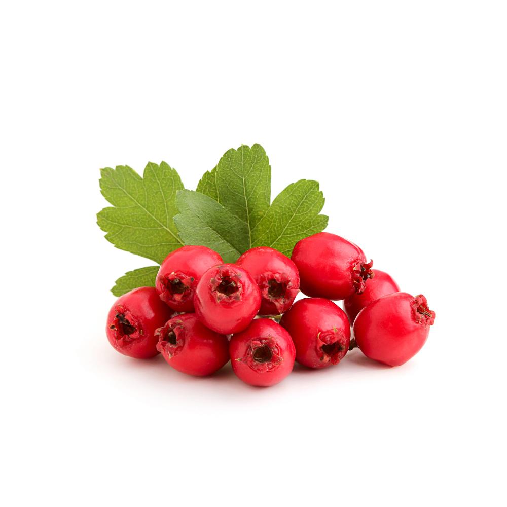 hawthorn-berries-and-leaves.jpg