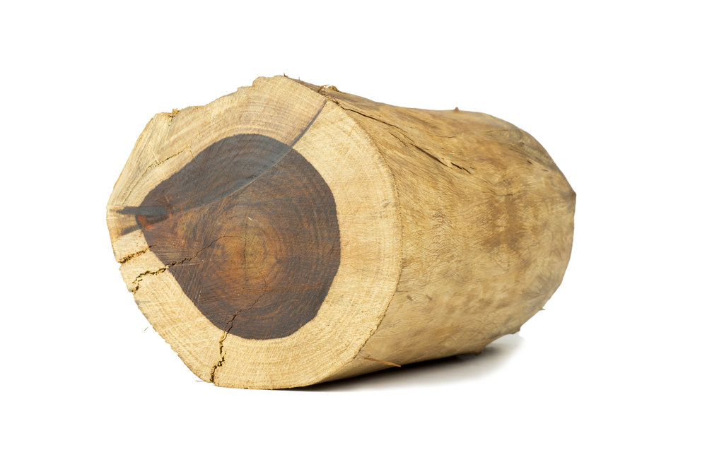 rosewood log.jpeg