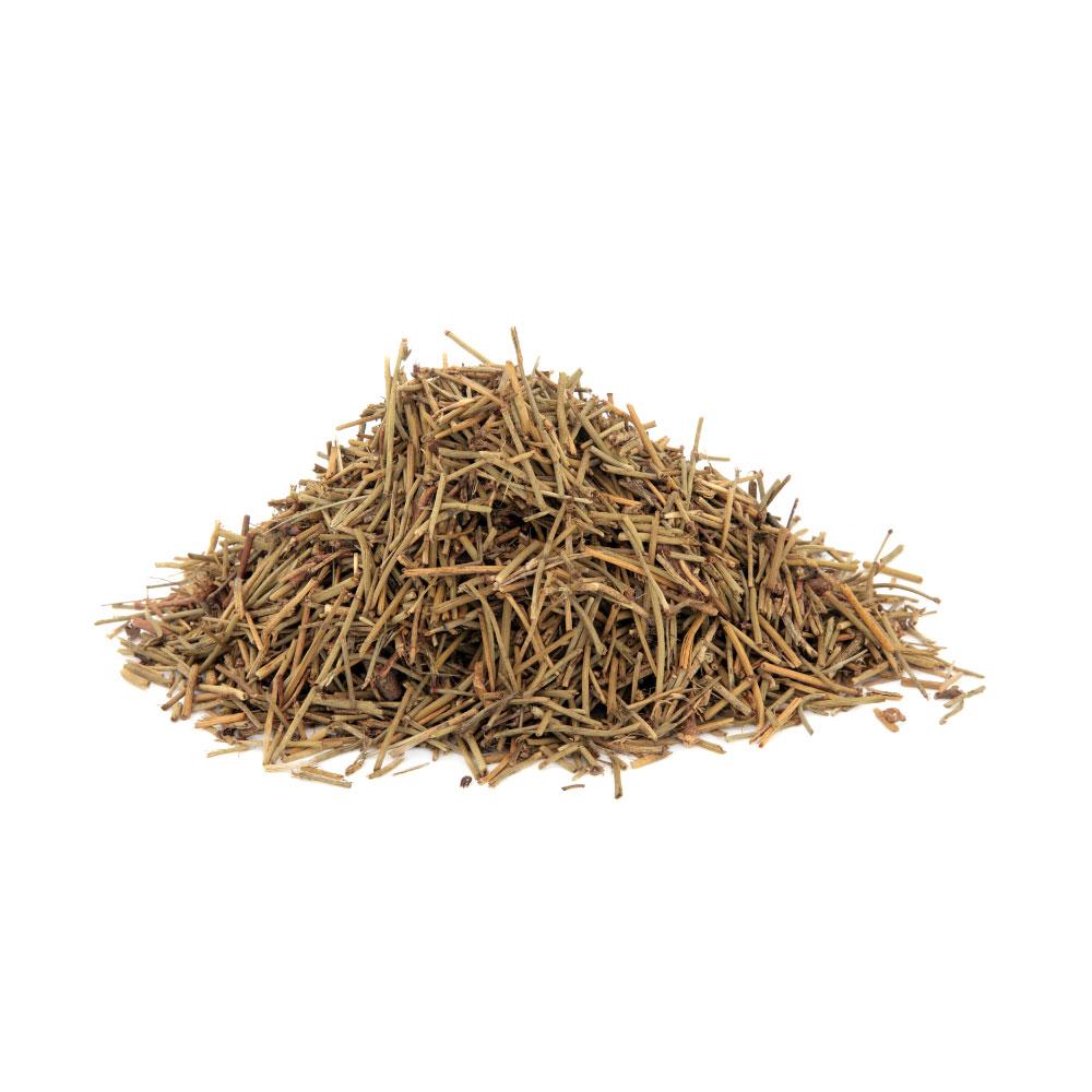 ephedra-herb.jpg