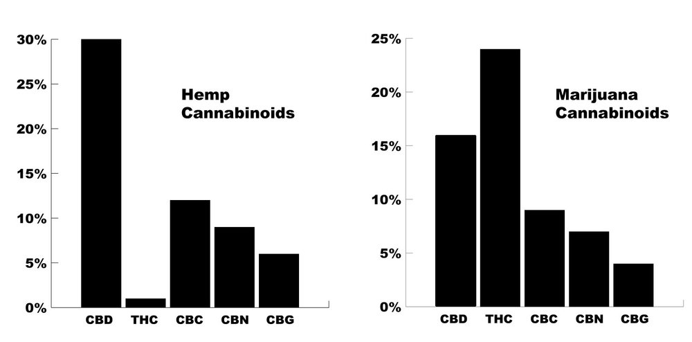 comparing-CBD-from-hemp-and-marijuana.jpg