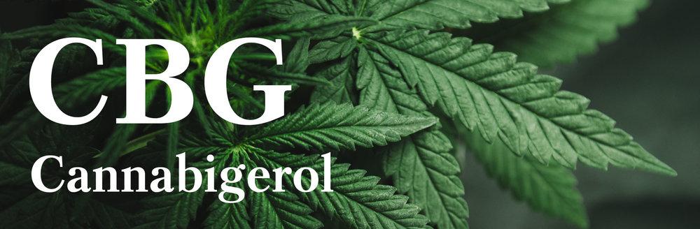cbg-cannabigerol-header.jpg
