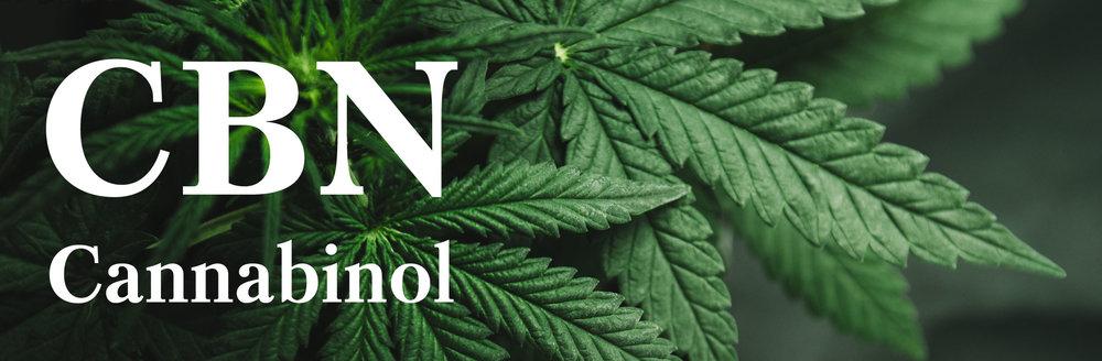cbn-cannabinol-header.jpg
