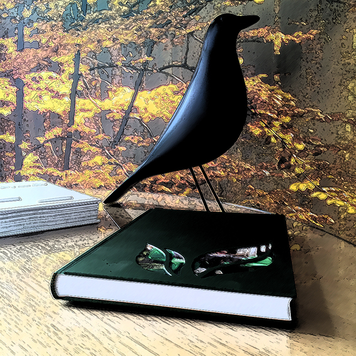 Black Bird Books