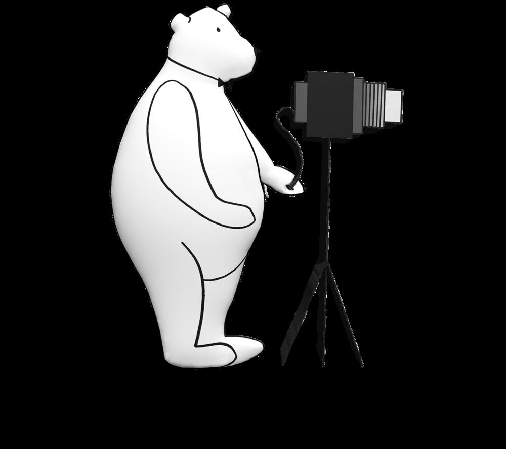 webphotobear.png