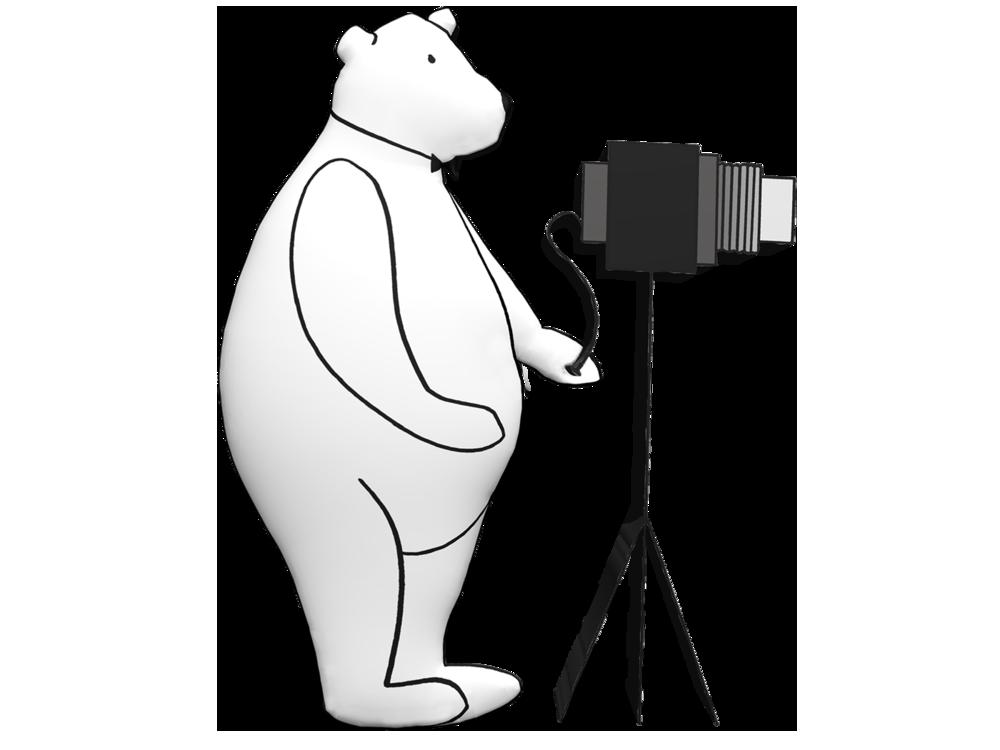 webphotobear-2 copy.png