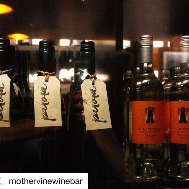 """cheers @mothervinewinebar! #Repost @mothervinewinebar ・・・ New whites by the glass...!!! Left: Adelaide exclusive - Sam Scott's new barrel fermented 2015 Fiano """"Pilota"""" Right: SC Pannel Pinot Grigio 2016 Come get some! #sawine #southaustralia #adl #adelaide #adlfoodie #safood #foodie #sagreat #smallbars"""