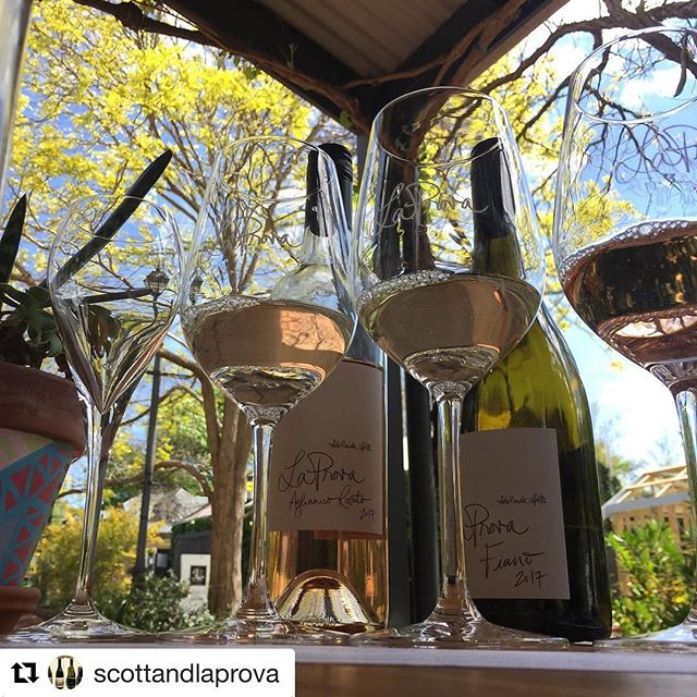 #Repost @scottandlaprova ・・・ Nice day for it. #cellardoor #hahndorf #scott #laprova #2017releases #prosecco #pinotgrigio #fiano #rosato @samscottwines