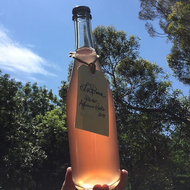 La Prova Pet-Nat Aglianico Rosato 2017 = dry, savoury, textural, bubbly, good times hitting the streets for the first time this weekend at @scottandlaprova cellar door  #laprova #petnat #aglianico #rosato #ahwineregion #adelhillswine