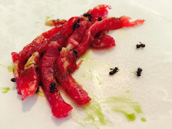 Beef tartare, celery oil and black ants