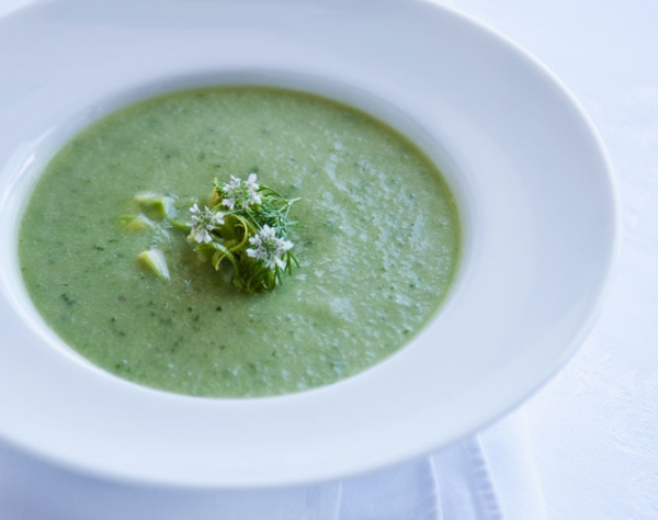 Chilled Cucumber and Avocado Soup  ©Jeff Kauck