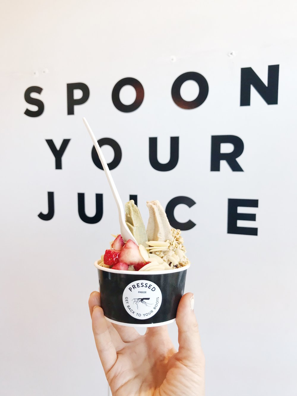 pressed-juicery-del-mar-california-vegan-ice-cream.jpg