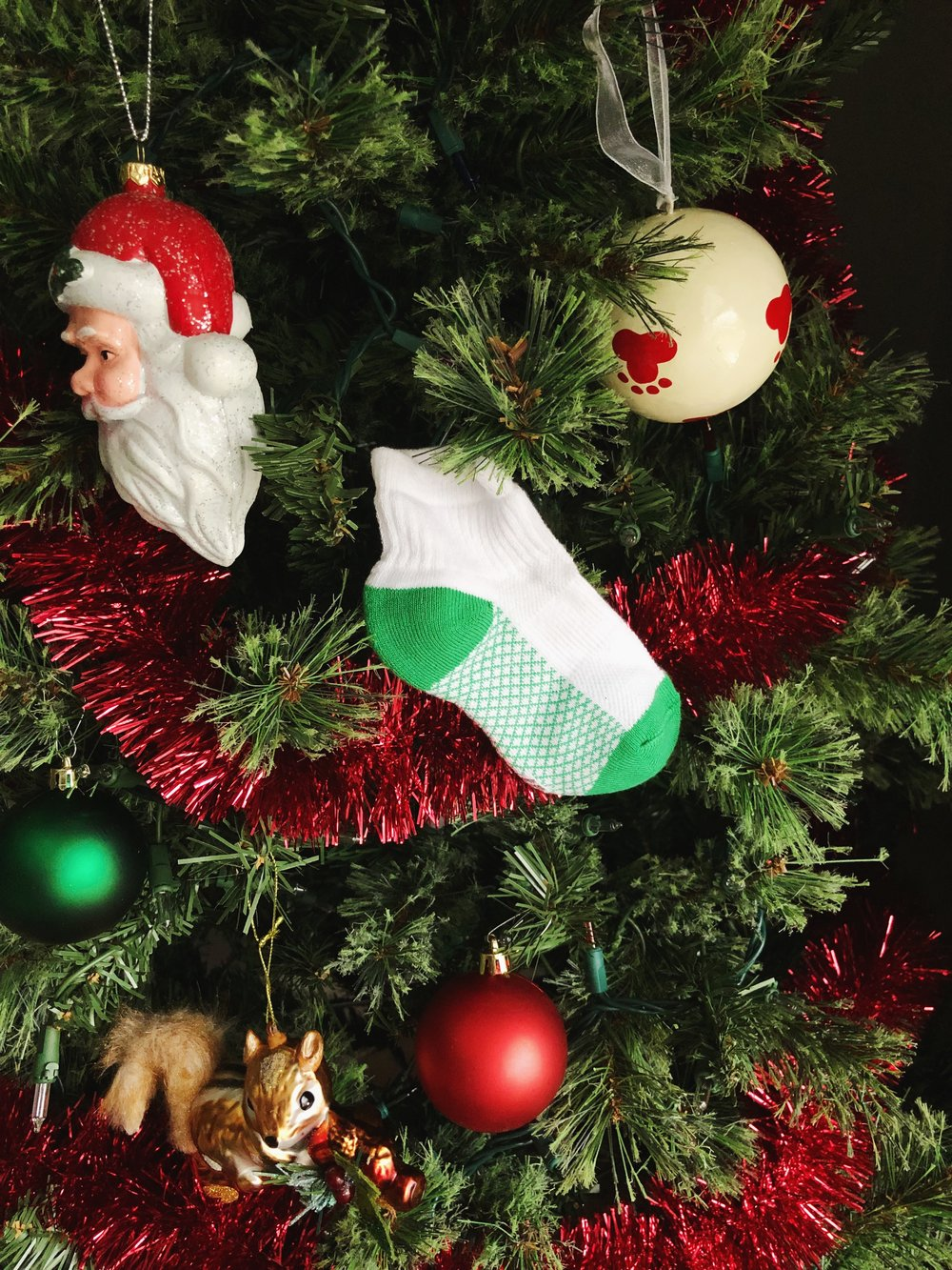 christmas-tree-for-dogs.jpg
