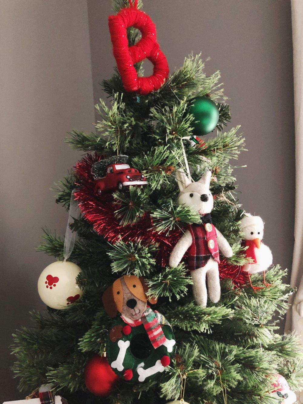 dog-christmas-trees.jpg