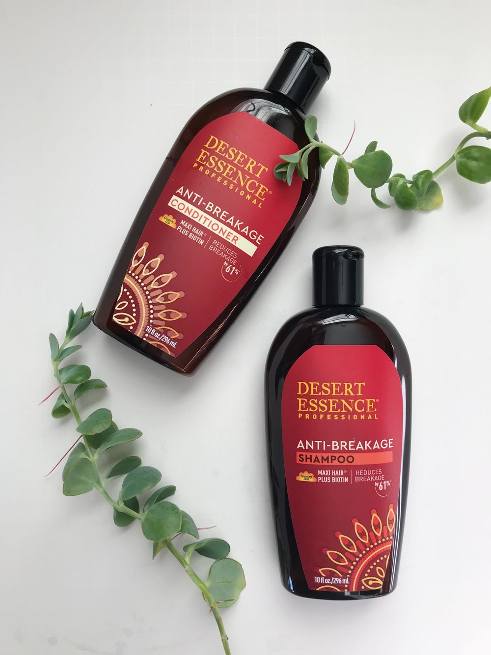 desert-essence-anti-breakage-shampoo.jpg