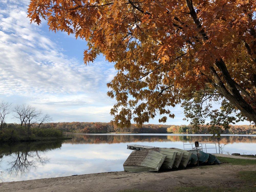 fall-trees-colorful.JPG