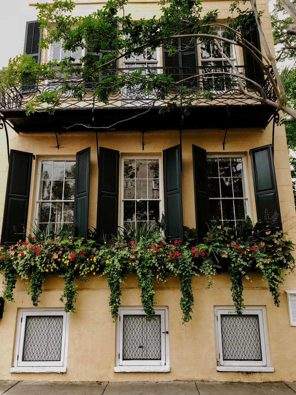 charleston-sc-city-guide-what-to-do-and-see-24.jpg