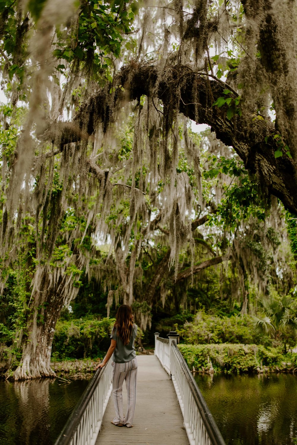 charleston-sc-city-guide-what-to-do-and-see-97.jpg