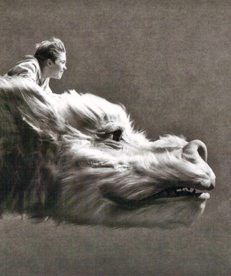 Ride the Luckdragon