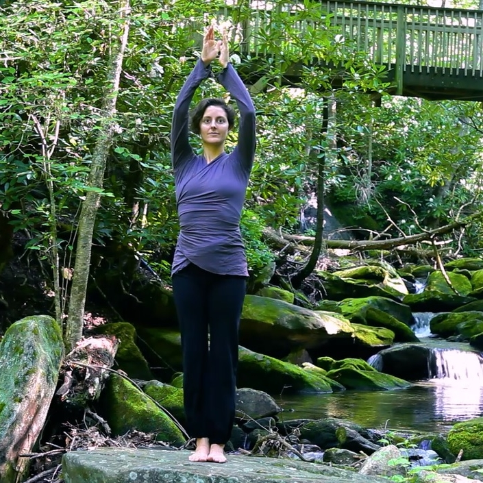 SPIRAL POWER QI GONG COURSE - with Virginia Rosenberg