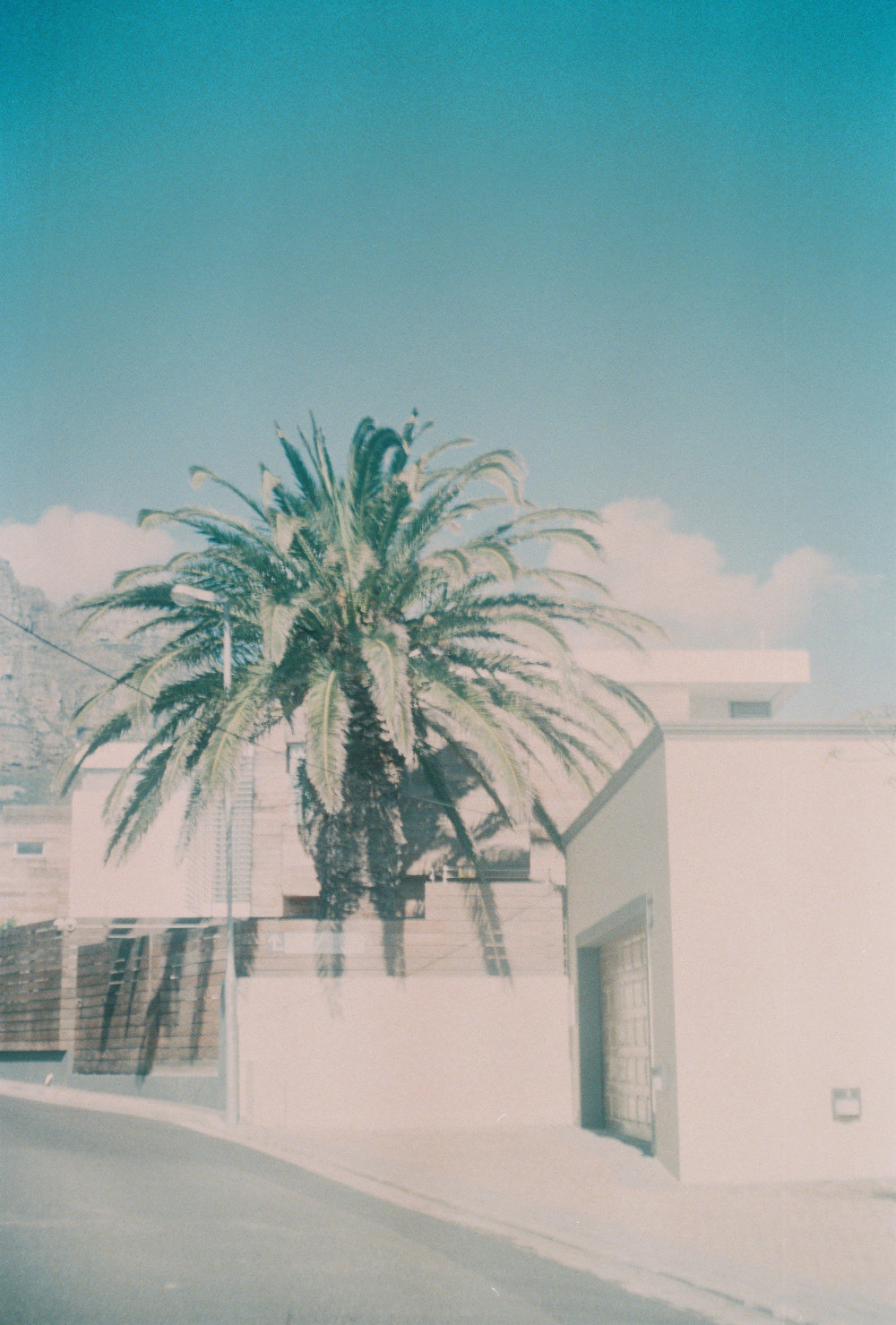 Catherine Frances - Film 5.jpg
