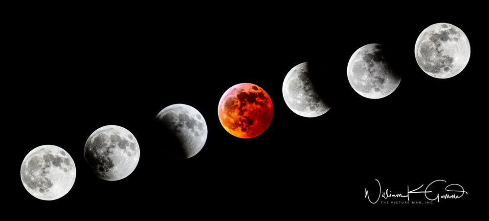 Eclipse composite__6NZ0139.jpg