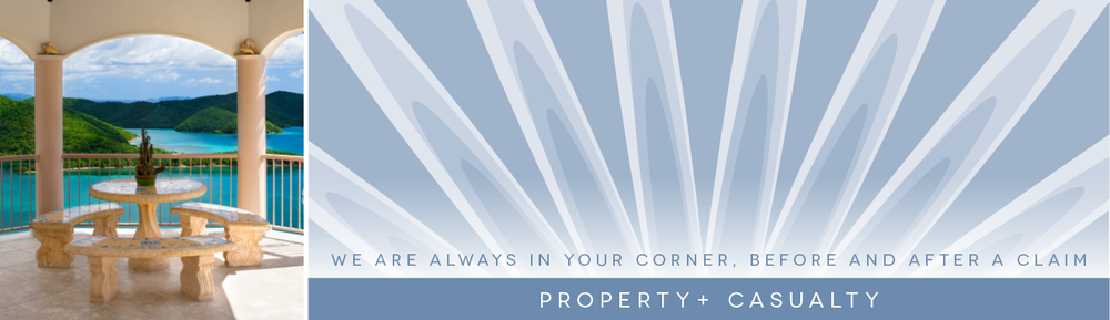 Property + Casualty Banner