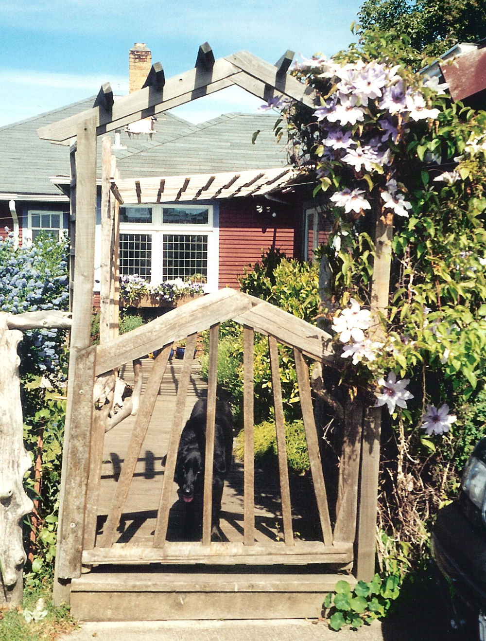 Driftwood rear gate