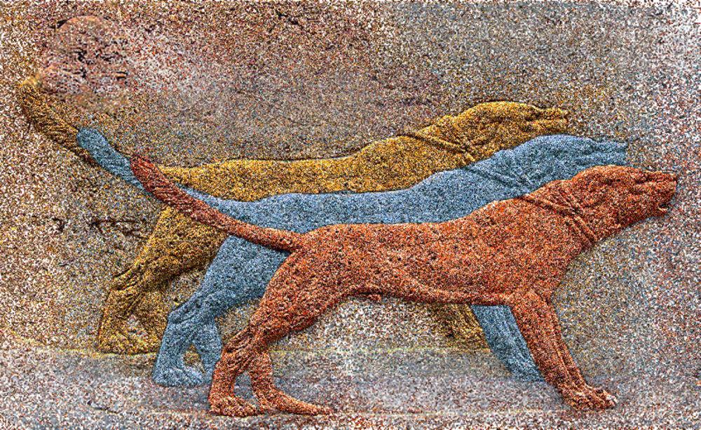 Areyan dogs, 1