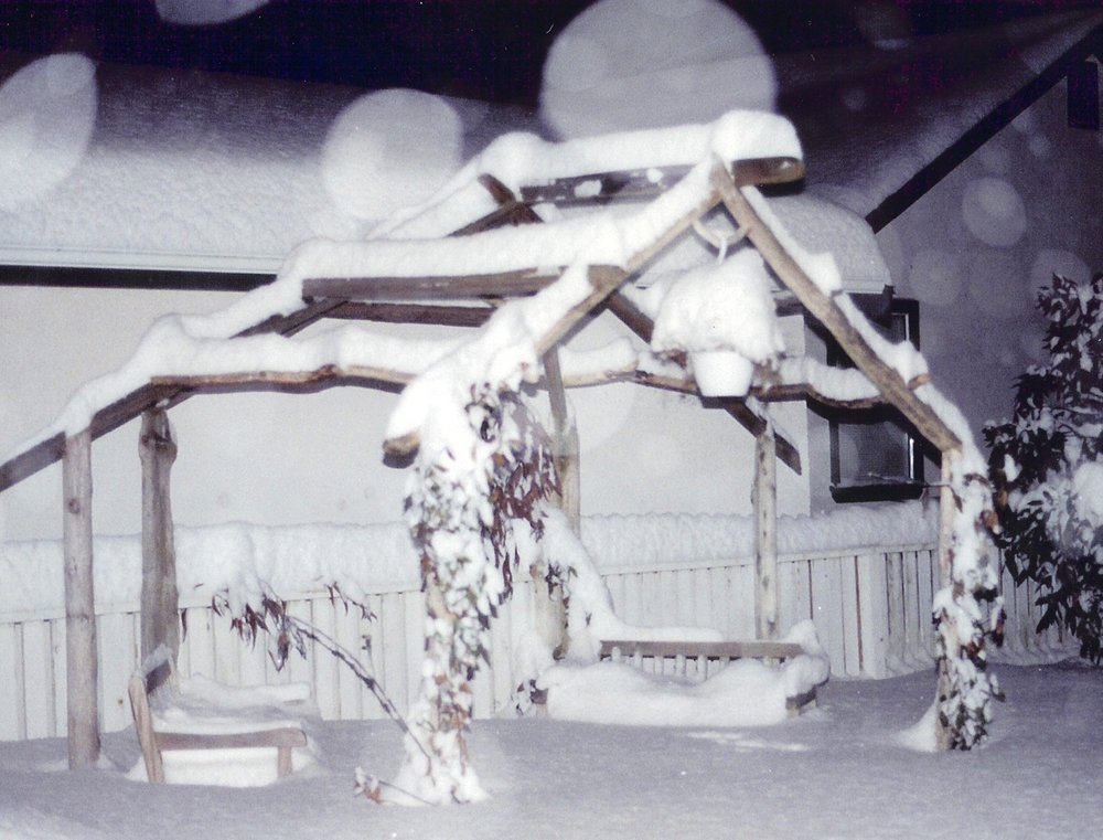Driftwood constructions, sukkah in winter