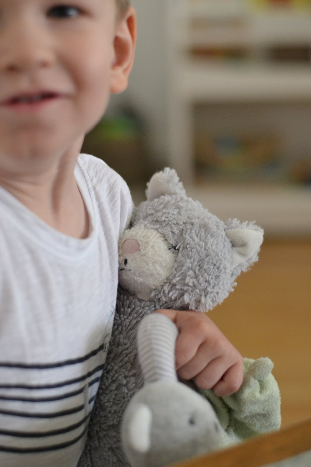 His beloved Bobby, along with other favorites: kitty and koala rattle (the rattle he insisted is his, and not the baby's)