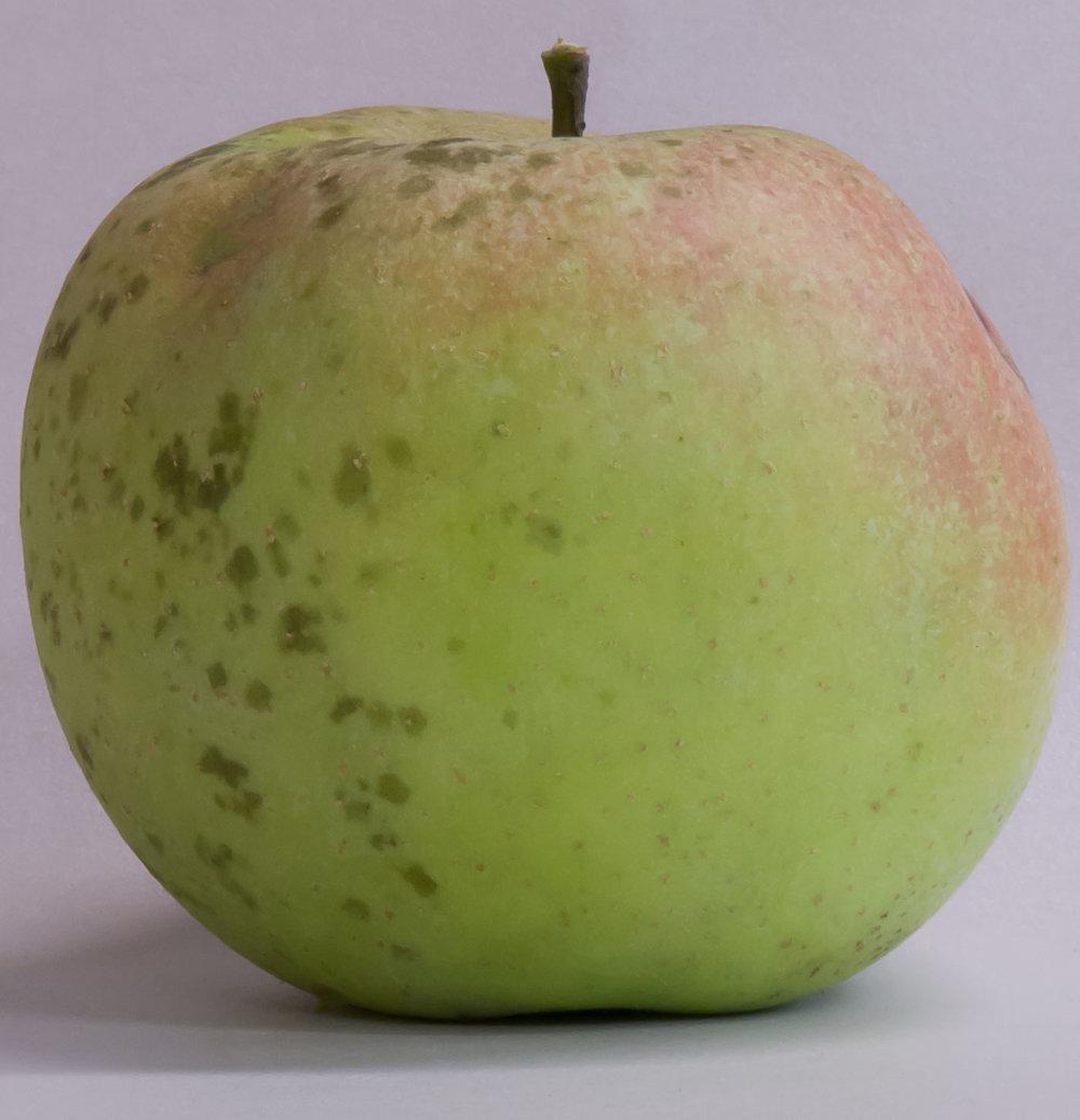 Eat Ugly Apples Door Creek Orchard