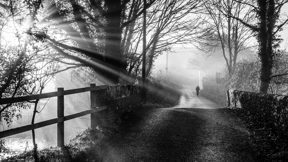 Early Morning Walk by Martin Cook