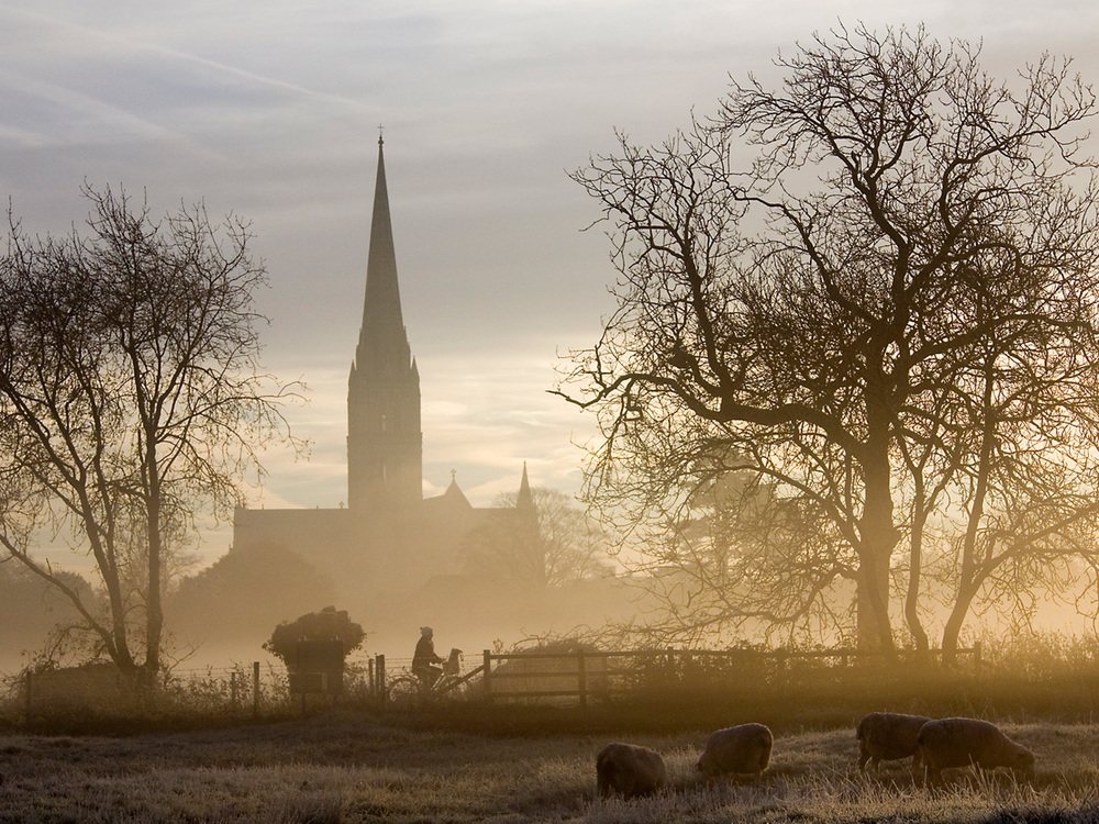 Winner 'A Misty Salisbury Morning' by Tony Oliver