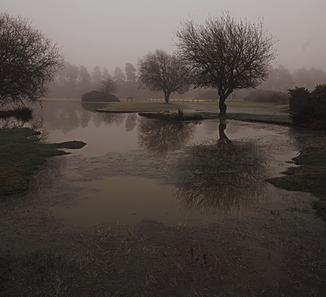 First 'Janesmoor Pond in the Mist' by Roger Kent