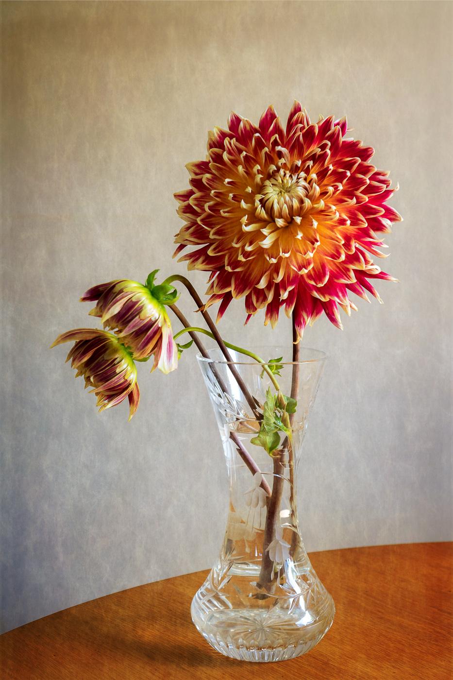 Crysanthemum Vase by Roger Ellway