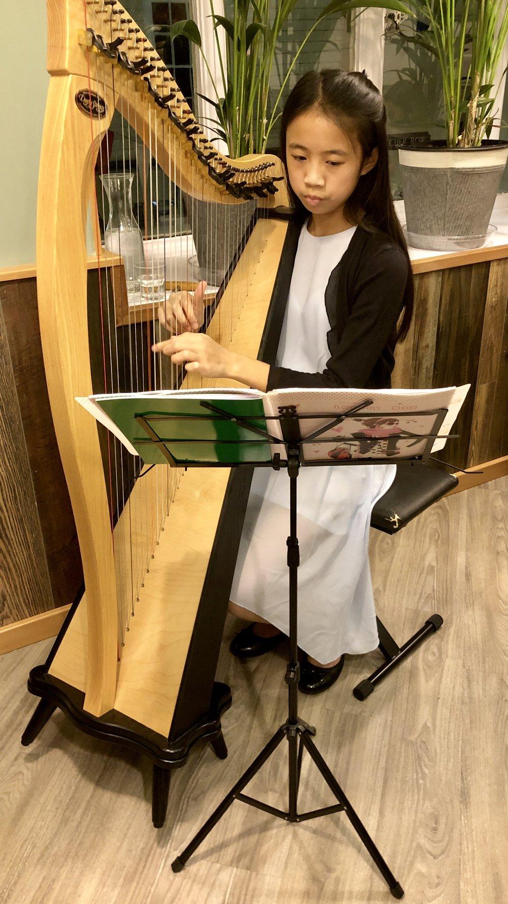 Marni-Harp