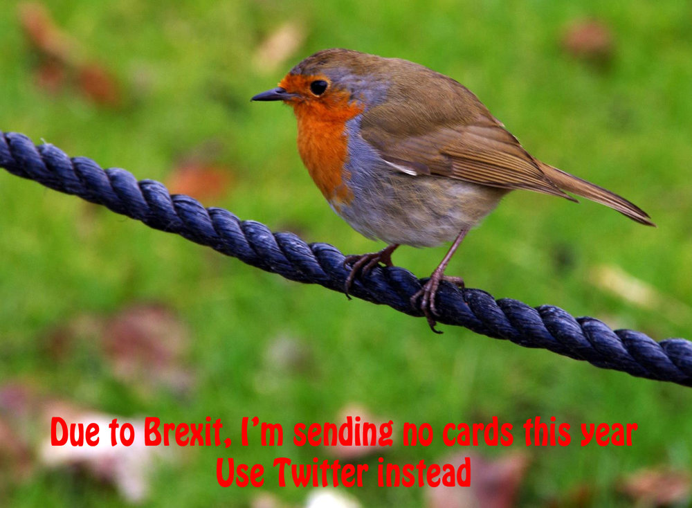 'Brexit Robin' by Louise Topp