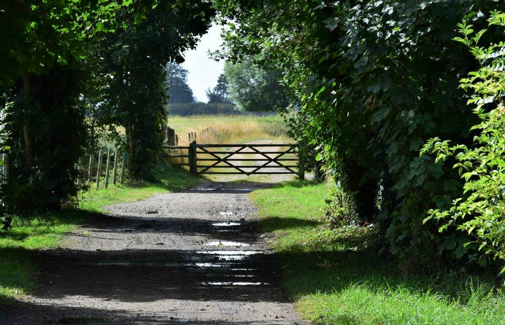 16_My Favourite Gateway_Stuart Kidd