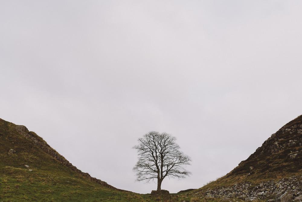 Scouting Northumberland Hadrian's Wall & Druridge Bay-0019.jpg