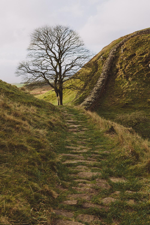 Scouting Northumberland Hadrian's Wall & Druridge Bay-0034.jpg
