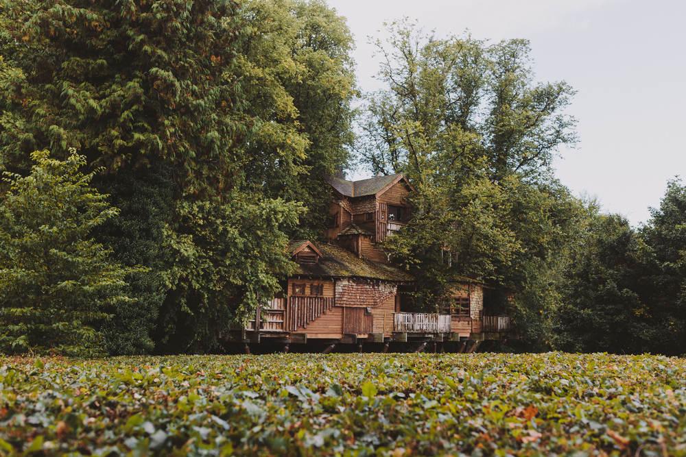 Alnwick Garden Treehouse exterior