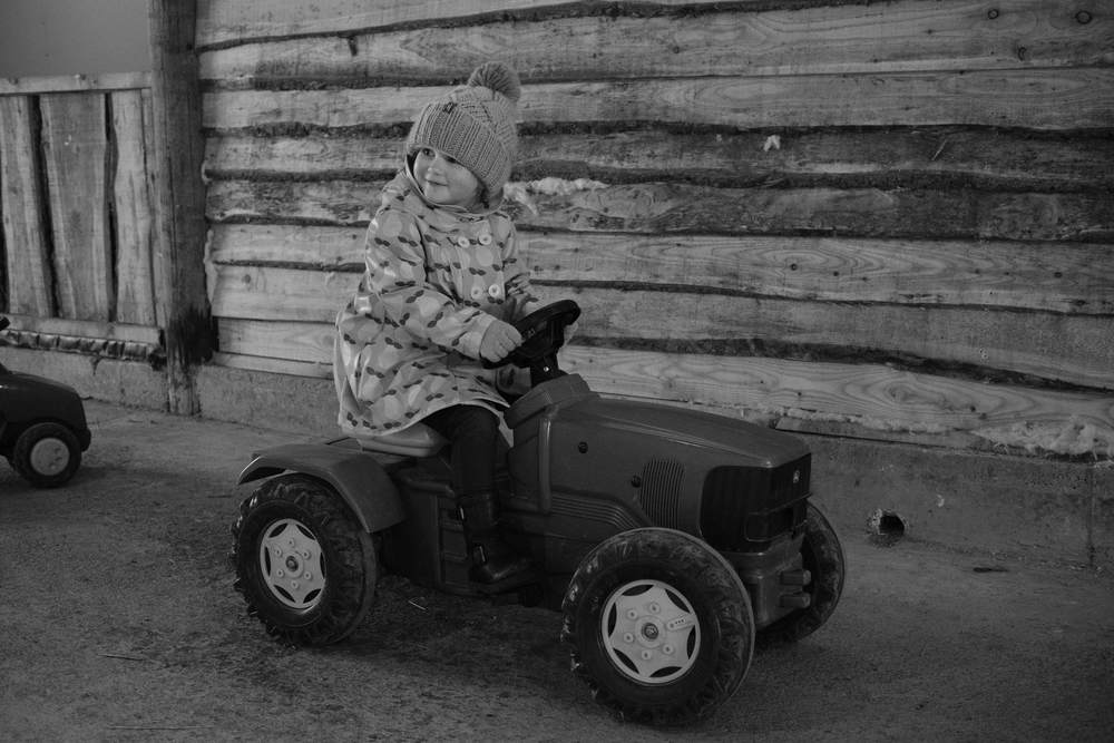 Black & White Audrey riding tractor at Eshottheugh Animal Park, Northumberland